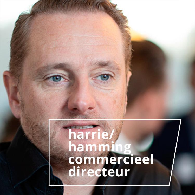harrie hamming - commercieel directeur